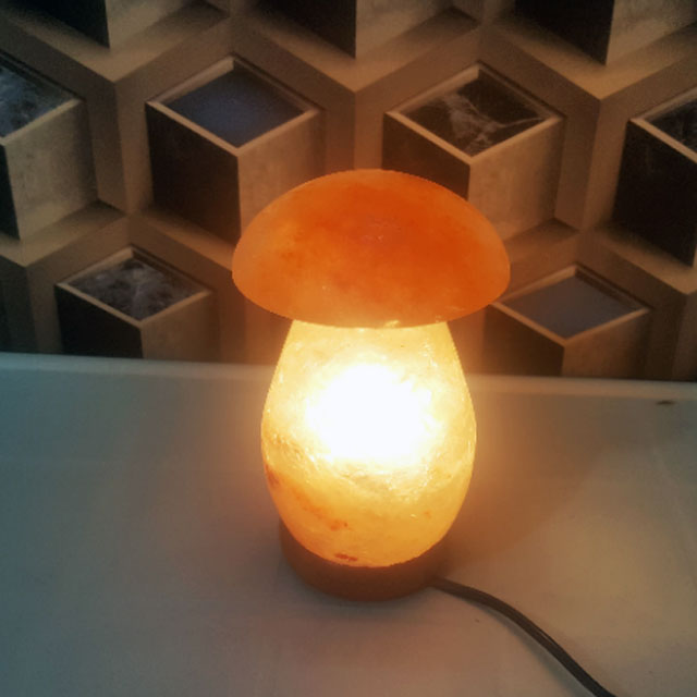 himalayan mushroom lamp with light