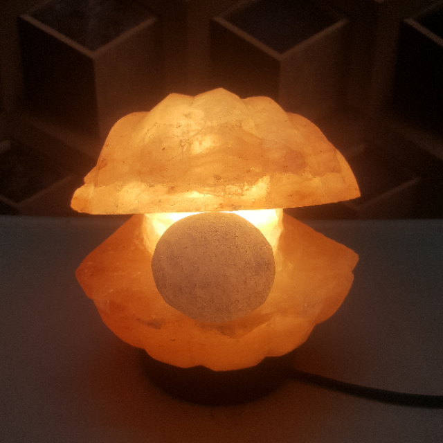 himalayan clam with pearl lamp with light