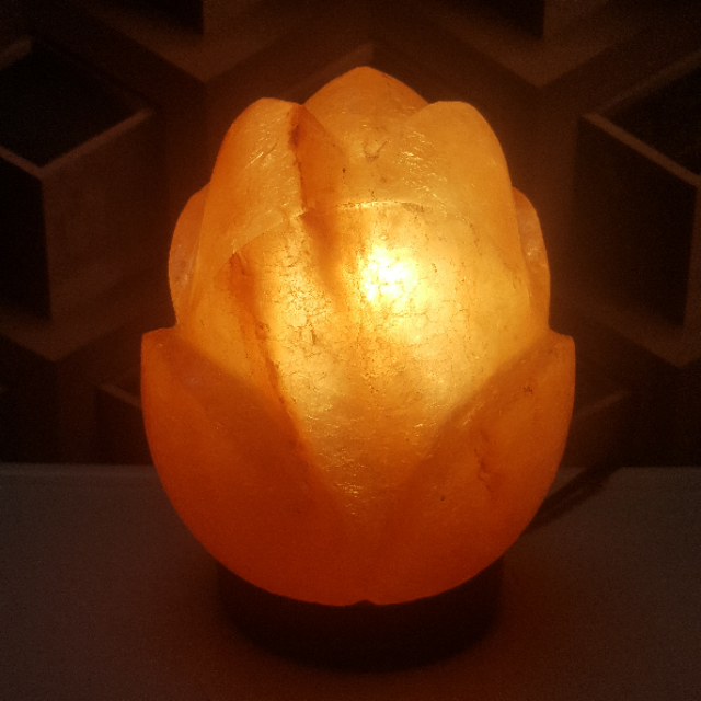 himalayan flower lamp with light