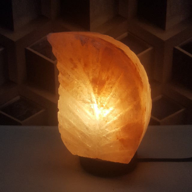 himalayan leaf lamp with light