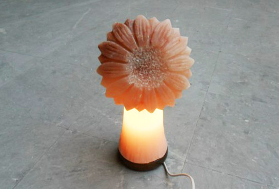 himalayan sun flower lamp with light